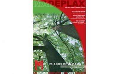 Revista Enero 2007